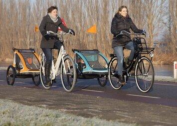 Przyczepka rowerowa dla dziecka Yepp Solo