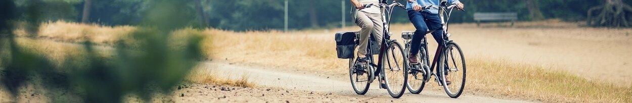 Rowery Miejskie-Rekreacyjne